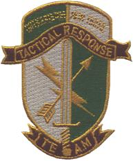 TRT Patch
